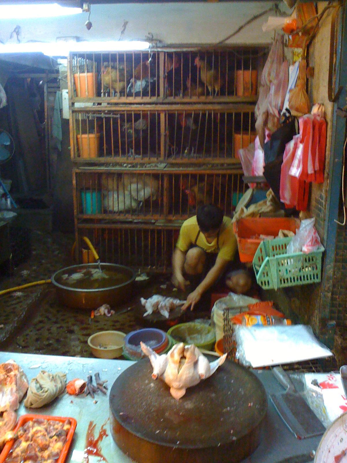chicken butchering