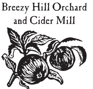 breezy hill square logo