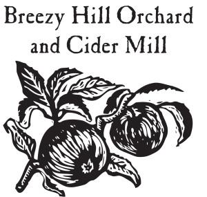 breezy hill square logo