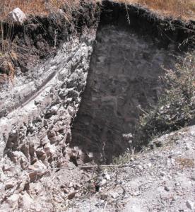 A calcareous site