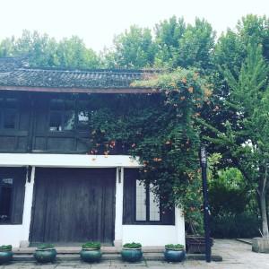 Hanzho store